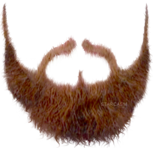 Beard PNG Transparent Image PNG Clip art
