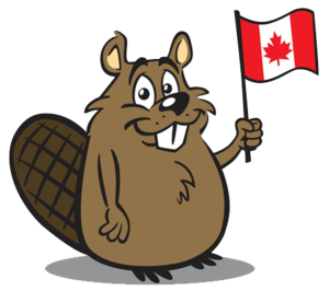 Beaver PNG Free Download PNG Clip art