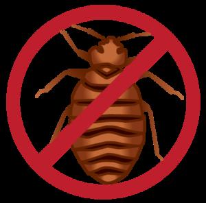 Bed Bug PNG Background Image PNG Clip art