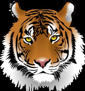 Bengal Tiger PNG Pic PNG Clip art