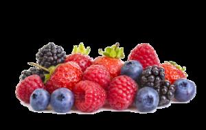 Berries PNG HD PNG Clip art