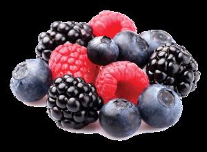 Berries PNG Pic PNG Clip art