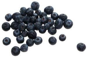 Berries PNG Picture PNG Clip art