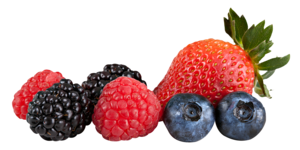 Berries Transparent PNG PNG Clip art
