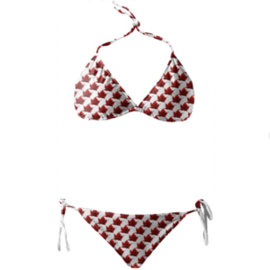 Bikini Transparent Background PNG Clip art