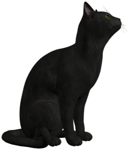 Black Cat PNG Photo PNG Clip art