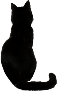 Black Cat PNG Photos PNG Clip art