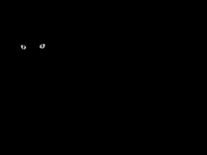 Black Cat PNG Transparent Image PNG Clip art