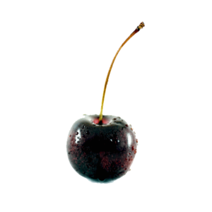Black Cherry PNG File PNG Clip art