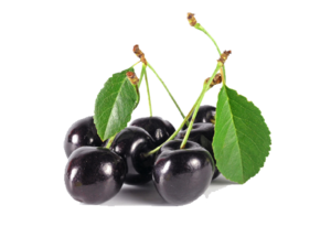 Black Cherry PNG Image PNG Clip art