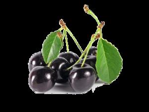 Black Cherry PNG Image PNG Clip art