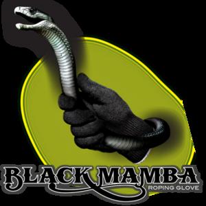 Black Mamba PNG Image PNG Clip art