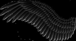 Black PNG Background PNG Clip art