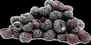 Black Raspberries PNG File PNG Clip art