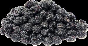 Black Raspberries PNG Transparent Image PNG Clip art