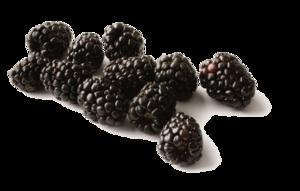 Black Raspberries Transparent Background PNG Clip art