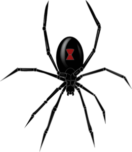 Black Widow Spider PNG Clipart PNG Clip art