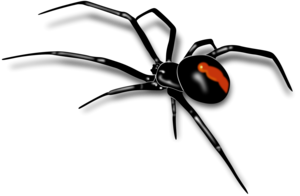 Black Widow Spider PNG Pic PNG Clip art