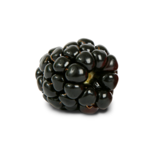 Blackberry Fruit PNG Photo PNG Clip art