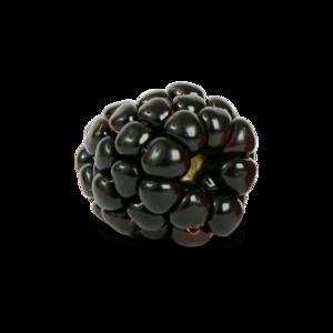 Blackberry Fruit PNG Photo PNG Clip art