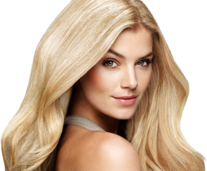 Blonde PNG Free Download PNG Clip art