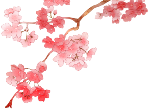 Blossom PNG File PNG Clip art
