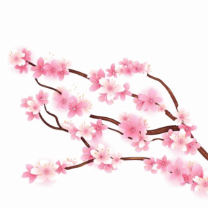 Blossom PNG HD Quality PNG Clip art
