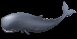 Blue Whale PNG Clipart PNG Clip art