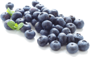 Blueberry PNG Clipart PNG Clip art