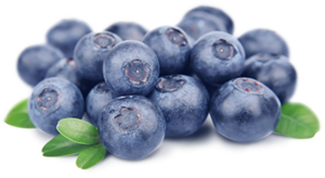 Blueberry PNG HD PNG Clip art