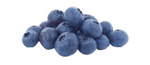 Blueberry PNG Pic PNG Clip art