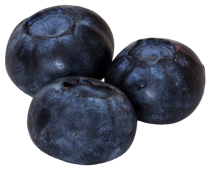 Blueberry PNG Picture PNG Clip art