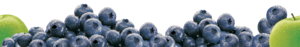 Blueberry PNG Transparent Image PNG clipart