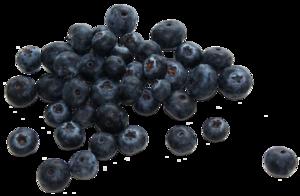 Blueberry PNG Transparent PNG Clip art