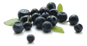 Blueberry Transparent Background PNG Clip art