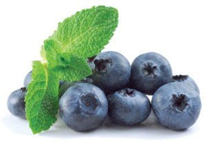 Blueberry Transparent PNG PNG Clip art