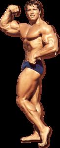 Bodybuilding PNG File PNG Clip art