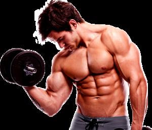 Bodybuilding PNG HD PNG Clip art