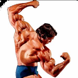 Bodybuilding PNG Image PNG Clip art