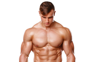 Bodybuilding PNG Pic PNG Clip art