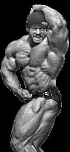 Bodybuilding PNG Transparent Image PNG Clip art