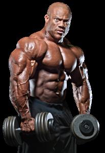 Bodybuilding PNG Transparent PNG Clip art