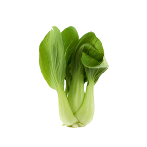 Bok Choy PNG Clipart PNG Clip art