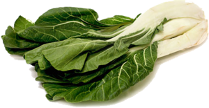 Bok Choy PNG File PNG Clip art