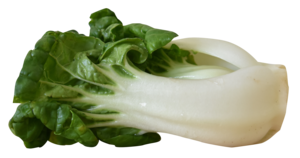 Bok Choy PNG HD PNG icon