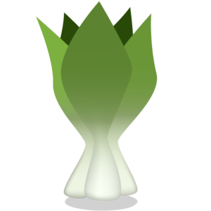 Bok Choy PNG Image PNG Clip art