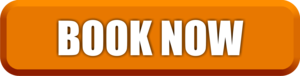 Book Now Button PNG Clipart PNG Clip art