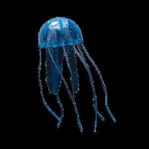 Box Jellyfish PNG Photos PNG Clip art