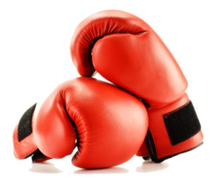 Boxing Gloves PNG Image PNG Clip art