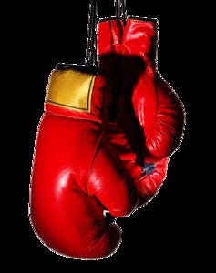 Boxing Gloves PNG Transparent Image PNG Clip art